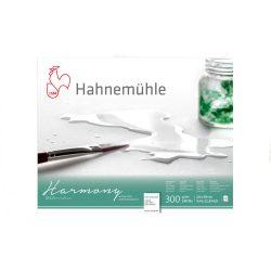 Hahnemühle Harmony 300g CP ragasztott, méret: A4