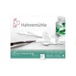 Hahnemühle Harmony 300g CP ragasztott, méret: A3