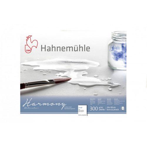 Hahnemühle Harmony 300g Rough ragasztott, méret: A4